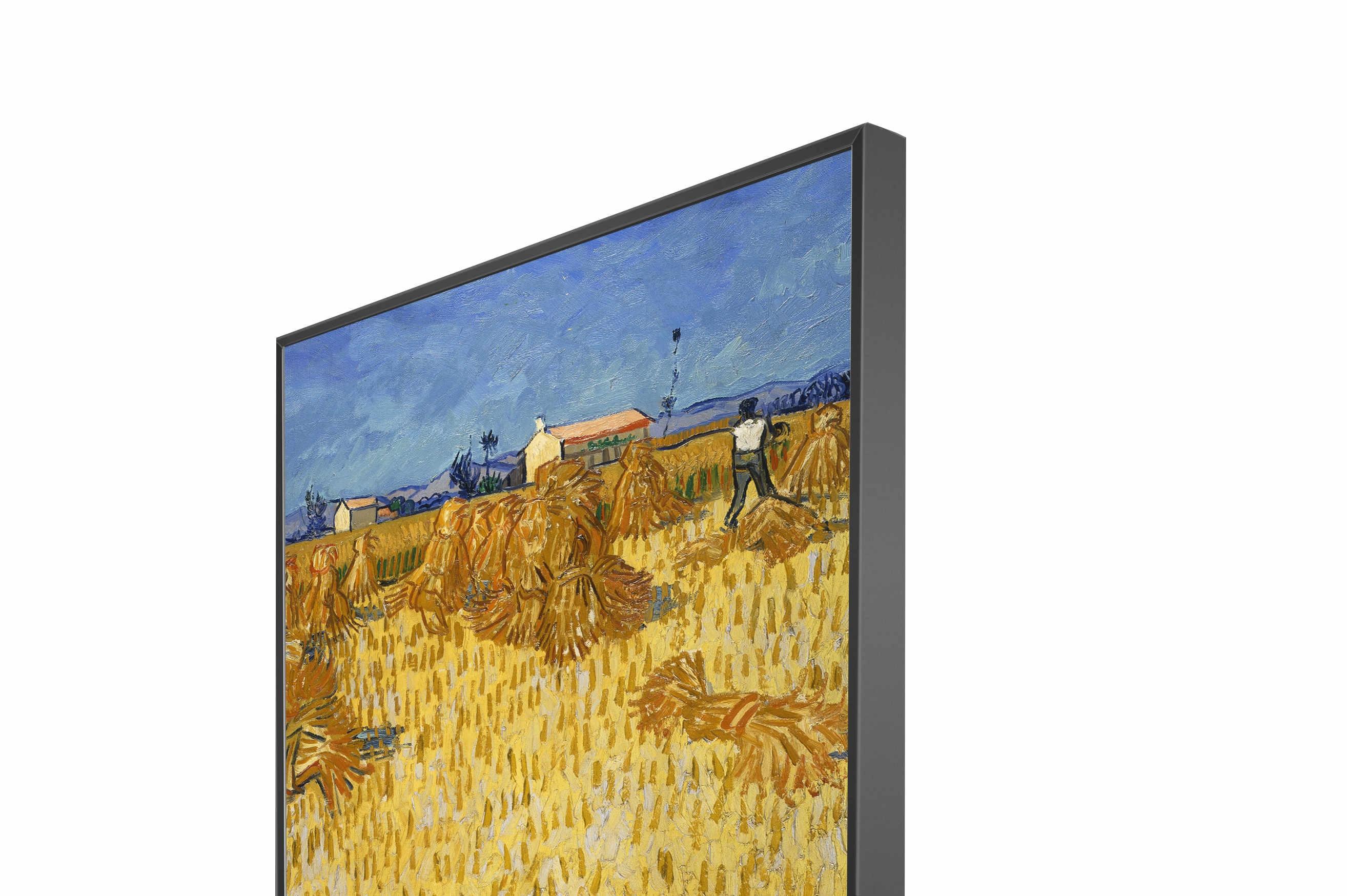 Harvest In Provence NXT Gen Panel